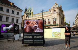 Первое, куда мы попали в Праге - это фото-выставка под открытым небом.