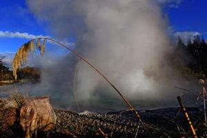 Роторуа - знаменитый туристический центр Новой Зеландии, находящийся в 3 часах езды от Окленда.