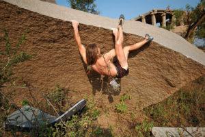 Проект Мастера Жабы - забавный, падать если что - в колючки!..