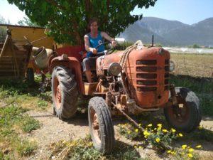 И ограничились бы мы цветочками, если бы по дороге не попался Александру трактор...